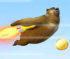 Bear Fly Fly Fly